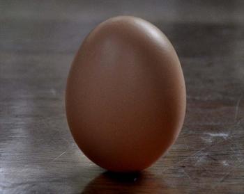 立春の卵...